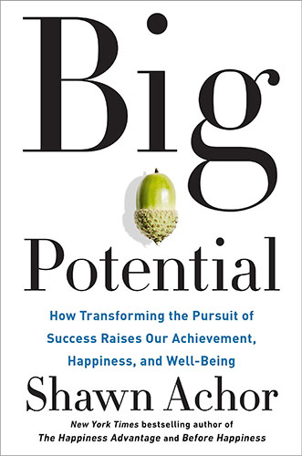 Big Potential: How Transforming the Pursuit of Success Raises Our Achievement, Happiness, and Well-Being by Shawn Achor