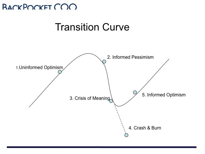 Transition Curve of Entrepreneurial Roller Coaster